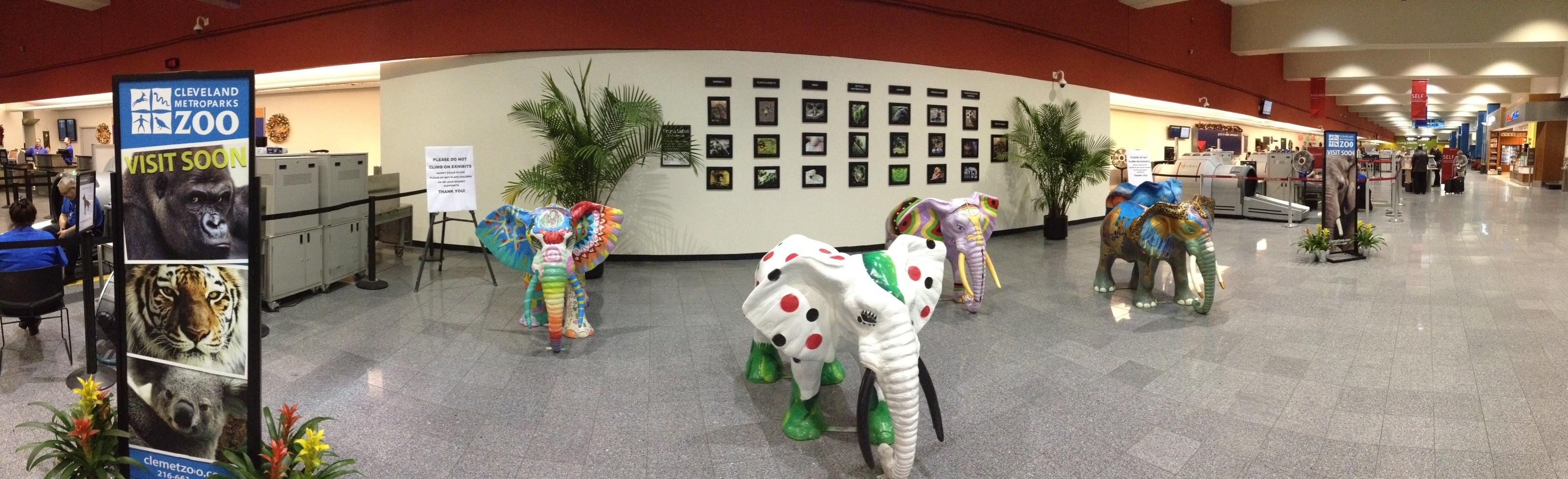 Cleveland Metroparks Zoo Photo Safari Exhibit Cleveland