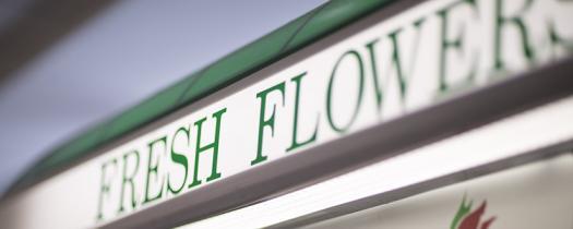 24-Hour Flower